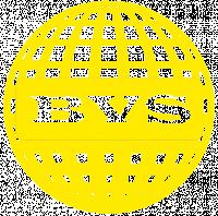 BVS-Rabota